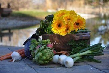 Twitter Your Way to a Great Garden with #gardenchat - Fine Gardening   Annie Haven   Haven Brand   Scoop.it