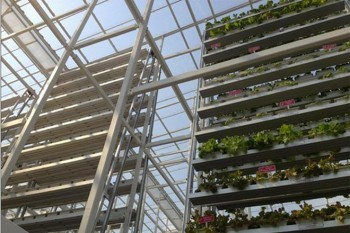 First Vertical Farm Opens in Singapore   Wired Design   Wired.com   Urban Food Security   Scoop.it