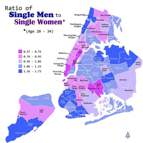Ratio of single men to single women in NYC | AP Human Geography Petrides | Scoop.it