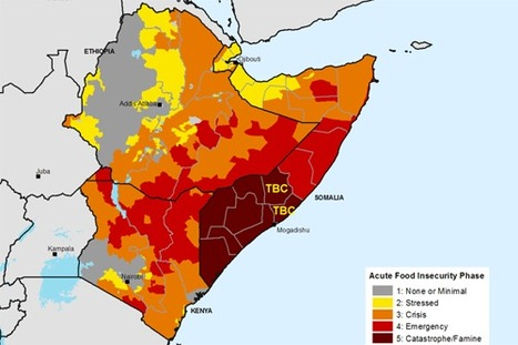 Drought Solutions: Rainwater Harvesting in Africa | Sustainable Futures | Scoop.it