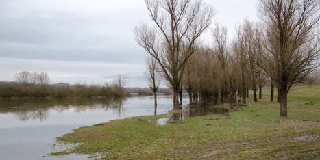Shortcomings in UK Government Review of Flooding | ESRC press coverage | Scoop.it