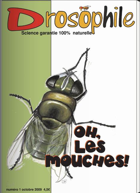 Drosophile - Le journal de science 100% naturelle | EntomoScience | Scoop.it