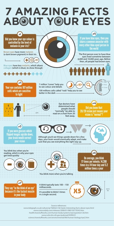 August is Eye Health Month-Get to an EyeMD for a checkup =>7 Amazing Facts About Your Eyes   Visual.ly   Your Brain Health   Scoop.it