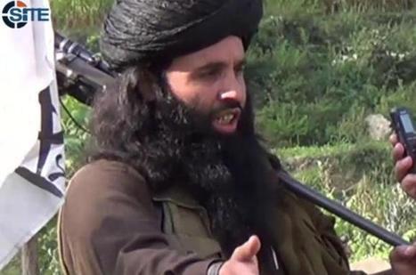 Pakistani Taliban: new leadership, old feuds | War On Terror | Scoop.it