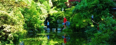 Japanese Gardens - Great British Gardens | Japanese Gardens | Scoop.it