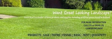 Barry Kramble Lawn Bowl Tips | Barry Kramble lawn Bowl Shop | Scoop.it