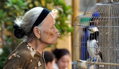 Not Always Feeling the Love in Vietnam   Ở ngôi làng thế giới   Scoop.it