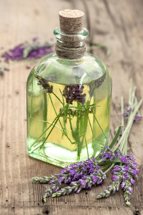 Lavender Oil Uses for Mood, Sleep and Skin | Nootropics | Scoop.it