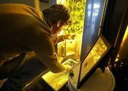 Raising vegetables indoors without soil? Inventive Appleton man puts passion toward hunger relief | Vertical Farm - Food Factory | Scoop.it