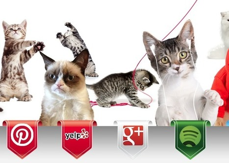 Social Networks If They Were Cats (You Read That Right) - Edudemic | Stretching our comfort zone | Scoop.it