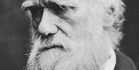It Is Darwin Day, a Celebration of Science and Reason | Science and Nature | Scoop.it
