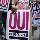 La PMA, victime de l'opposition au mariage homosexuel ? | procreation medicalement assistée | Scoop.it