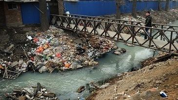 China podría aplicar la pena de muerte a los criminales del medio ambiente | Sociología ambiental | Scoop.it