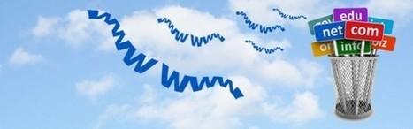 Nuovi domini per i siti web   Marketing & Web Marketing   Scoop.it