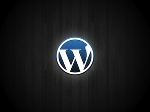 How to Improve your WordPress Website for SEO   SEO News Videos Blogs Articles infographic   Scoop.it