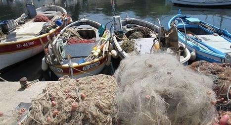 Hugues Ravenel : « nous cherchons à construire le tableau de bord ... - www.econostrum.info   Les AMP en Méditerranée   Scoop.it