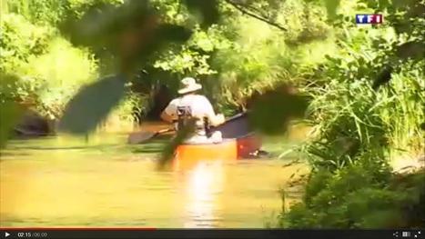Le journal de 13h - Réserves naturelles (3/5) : la rivière d'or des Landes en bateau | Ecotourisme Landes de Gascogne | Scoop.it