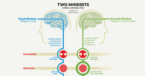 Fixed vs. Growth: The Two Basic Mindsets That Shape Our Lives | 21st Century Leadership | Scoop.it