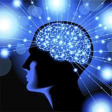 Laurent Schapira Psychothérapie - EX 4.4 : Mettre le cerveau sur Pause | Développement personnel, vision positive, bien-être | Scoop.it