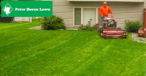 Lawn Care | Snow Removal | Landscaping | Peter Doran Lawn & Landscaping | Minnesota Small Business | Scoop.it
