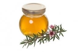 CICATRISATION des PLAIES: Vous avez dit du miel, mais quel miel ?   Professionnels de Santé   Scoop.it