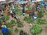 Ensuring food security: Key resources - Nutrition, Hunger, Climate Change...Gender - SciDev.Net   study   Scoop.it