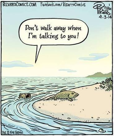 Então foi assim... | Peixologia | Scoop.it