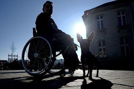 Handicap : ces établissements qui se sont rendus accessibles @libe | 694028 | Scoop.it