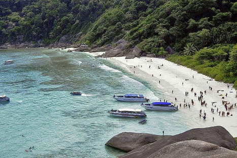 La Thaïlande ferme ses îles paradisiaques victimes du tourisme | Carnets de plongée | Scoop.it