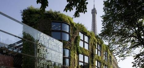 Could the future of the environment be found within the vertical ... | Vertical Gardens | Scoop.it
