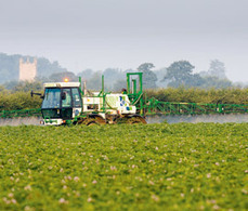 BBSRC mention: Potato industry research gets funding boost | BIOSCIENCE NEWS | Scoop.it