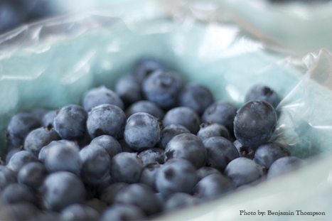 A Cup of Blueberries a Day Protects Against Two of the Most Degenerative Diseases Known to Man | AltHealthWorks.com | Fitness, Health, Running and Weight loss | Scoop.it