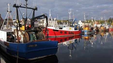 Scottish fishers to highlight opportunities of Brexit | Aquaculture Directory | Aquaculture Directory | Scoop.it