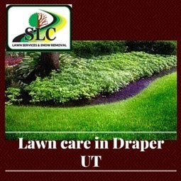 Lawn Care Ideas From Draper, UT Experts   Great Reads   Scoop.it