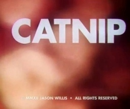 Watch these Sundance short films to learn the dangers of catnip and zombies | Digital-News on Scoop.it today | Scoop.it