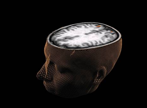 An 'empathy switch' allows psychopaths to feel at will | Brain science | Scoop.it