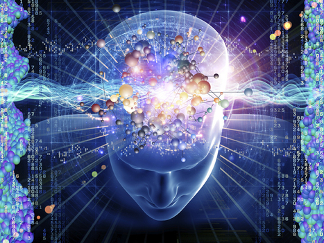 The Study of Fundamental Consciousness Entering the Mainstream | Social Foraging | Scoop.it
