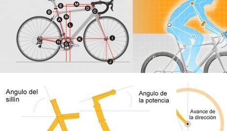 INFORME: La geometría de una bicicleta | Reparación y mantenimiento | Ciclismoafondo.es | btt mantenimiento | Scoop.it