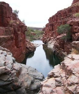 'Oldest fossils' found in Pilbara - The West Australian | Amateur and Citizen Science | Scoop.it