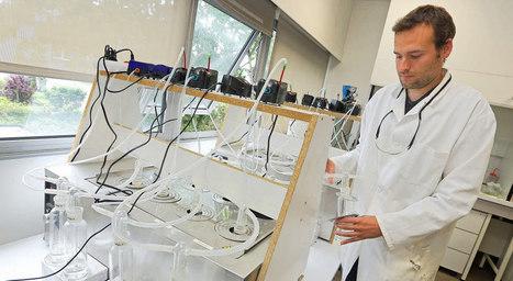 Plastique.  Il peut être écologique ! | Institut de Recherche Dupuy de Lôme - CNRS FRE 3744 | Scoop.it