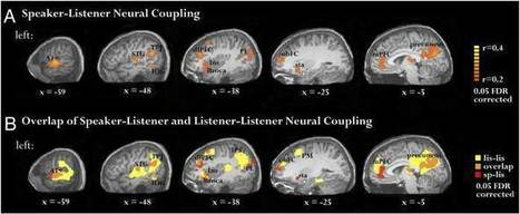 How Does the Act of Writing Affect Your Brain? | Creative_Inspiration | Scoop.it