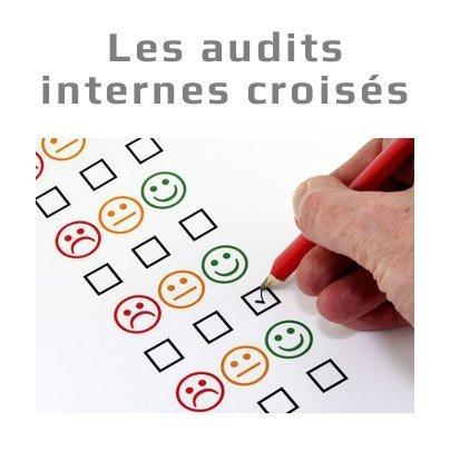 Les audits internes croisés | Le blog de Christophe Chabbi | Qualitae SAS | Evaluation de la conformité | Scoop.it