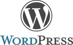 A Beginner's Guide to WordPress | Business 2 Community | Business and Blogging | Scoop.it