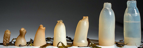 Cet homme a inventé des bouteilles biodégradables en algues | Ca m'interpelle... | Scoop.it