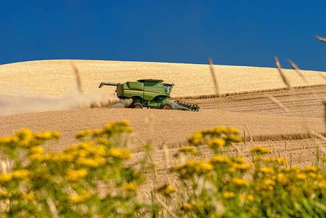 L'accaparement de terres et la concentration foncière menacent-elles l'agriculture? | Questions de développement ... | Scoop.it