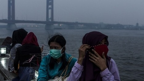 Asian haze set to become worst on record | Sustain Our Earth | Scoop.it