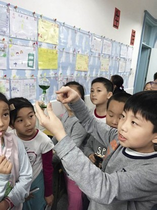 Nurture Creative Thinkers in China | Aprender y educar | Scoop.it