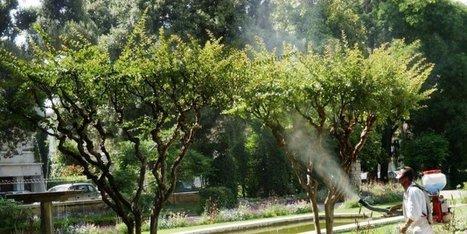 Santé : les insecticides nuisent au cerveau des enfants | Agriculture en Dordogne | Scoop.it