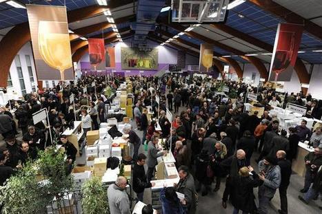 Loisirs | 200 vins à découvrir en trois jours | oenologie en pays viennois | Scoop.it