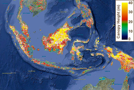 Now on Google Earth: NASA updates global forest height map | OpenSource Geo & Geoweb News | Scoop.it
